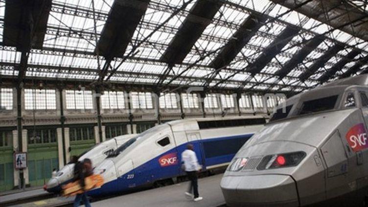 TGV gare Montparnasse (AFP/Loîc Venance)