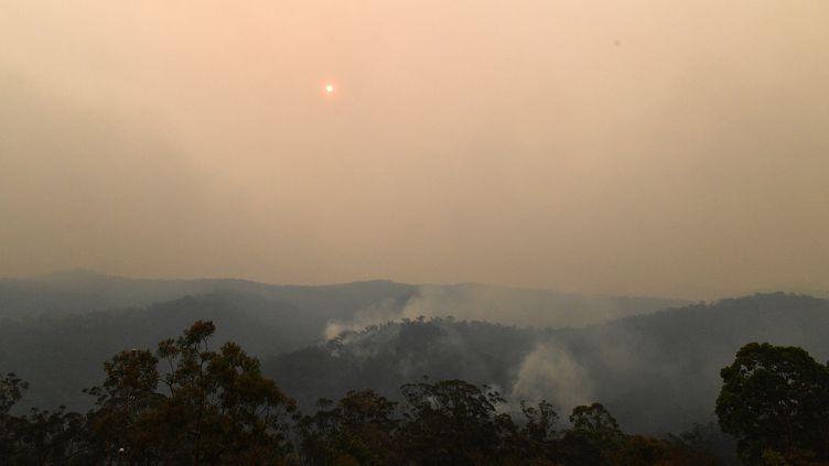 La mangrove dévorée par les flammes au nord de Sydney (Australie), samedi 7 décembre. (SAEED KHAN / AFP)