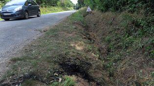 Le fossé dans lequel a été retrouvé le véhicule qui transportait 14 mineurs, le 2 août 2015, à Rohan (Morbihan). Quatre jeunes sont morts dans l'accident. (FRED TANNEAU / AFP)