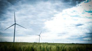 Des éoliennes près de Boisville-la-Saint-Père (Eure-et-Loir), le 9 juin 2019. (ELKO HIRSCH / HANS LUCAS / AFP)