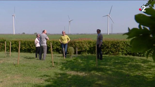 Energie : réduction d'impôts pour un couple vivant près d'éoliennes, dans le Maine-et-Loire