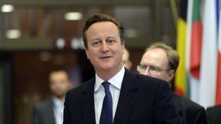 David Cameron, le 19 février 2016 à Bruxelles. (THIERRY CHARLIER / AFP)