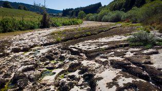 Le Doubs, ici près de La Longeville le 12 août 2018, a totalement disparu par endroits en raison de la sécheresse. (FABRICE COFFRINI / AFP)