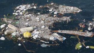Des déchets plastiques au large de Naples. La Méditerranée est la mer qui comprend le plus fort taux de concentration de déchets plastiques. (TOM KOENE / DPA / AFP)