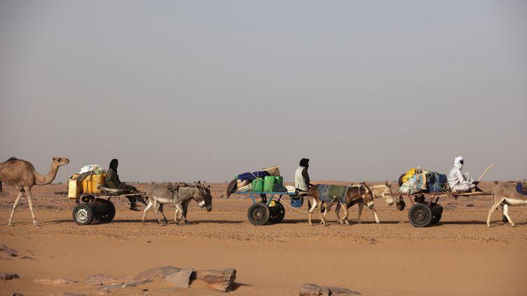 Les transports se font essentiellement grâce aux ânes dans le région du Sahel. Photo prise à Agadez au nord du Niger en septembre 2013. (JOE PENNEY / X02952)