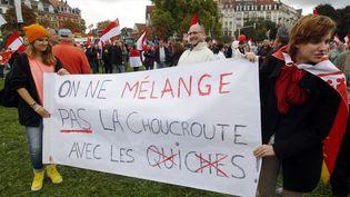 Lors de la manifestation contre la fusion de l'Alsace avec la Lorraine et Champagne-Ardenne, le 11 octobre 2014 à Strasbourg. (  MAXPPP)