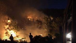 Situé à une centaine de kilomètres d'Athènes (Grèce), l'incendie a réduit en cendre une forêt de pins unique. La Grèce appelle l'Europe à l'aide. (france 3)