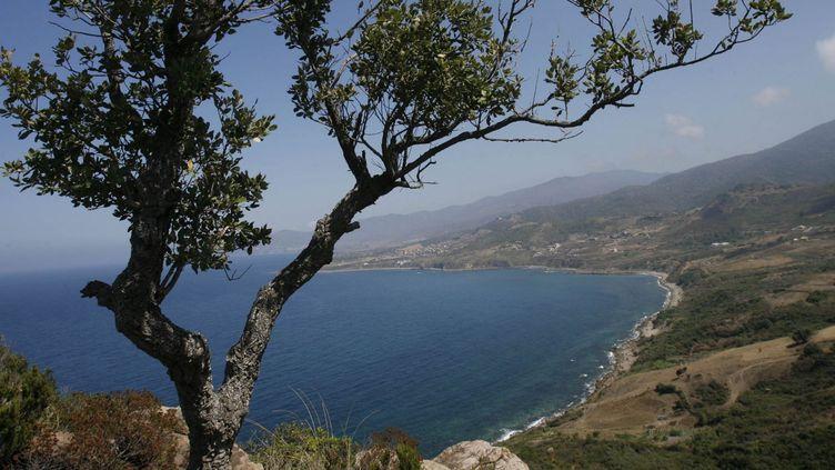 La chaîne montagneuse en Kabylie, bordée de plages sur la Méditerranée, où il peut être aussi dangereux de s'aventurer. En août 2008, huit touristes y ont été tués. (ZOHRA BENSEMRA / REUTERS)