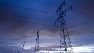 Des lignes électrique près de Caen,dans le Calvados, le 10 janvier 2013. (BEAUVIR-ANA / ONLY FRANCE)