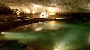 Des visiteurs admirent les formations calcaires de la grotte de Choranche, en août 2007. Photo d'illustration. (MAXPPP)