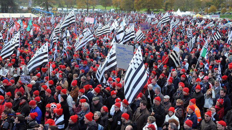 Les Bonnets rouges rassemblés à Carhaix, samedi 30 novembre. (FRED TANNEAU / AFP)