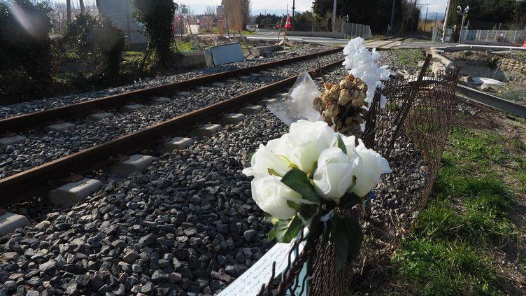 Le passage à niveau de Millas, le 21 février 2018, où un car scolaire est entré en collision avec un train le 14 décembre 2017, tuant six collégiens. (RAYMOND ROIG / AFP)