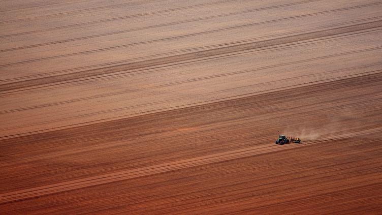 Une exploitation de soja au Brésil, le 9 décembre 2008. (RODRIGO BALEIA / AFP)