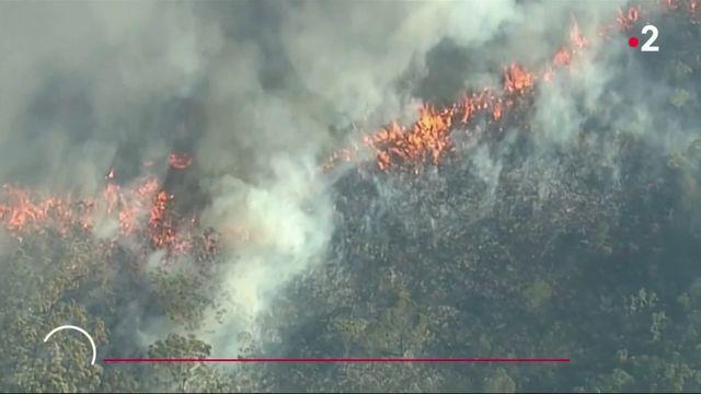 Australie : les pompiers face à de gigantesques incendies