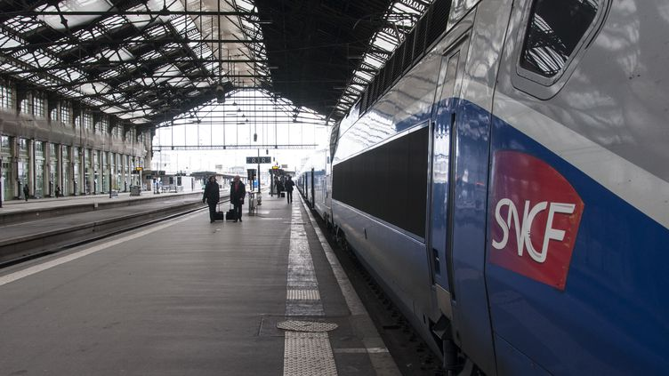 """La grève """"tournante"""" à la SNCF doit courir du 3 avril au 28 juin 2018, c'est-à-dire comprendre les vacances de printemps et les différents ponts du mois de mai. (DAVID SEYER / CROWDSPARK)"""