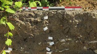 C'est une surprenante découverte qui a été effectuée sur l'île d'Oléron (Charente-Maritime). Sur le terrain qui doit accueillir le nouveau bâtiment de la gendarmerie, des archéologues sont parvenus à mettre au jour les vestiges d'un hameau. Il reste très peu de temps aux scientifiques avant la reprise des travaux. (France 3)