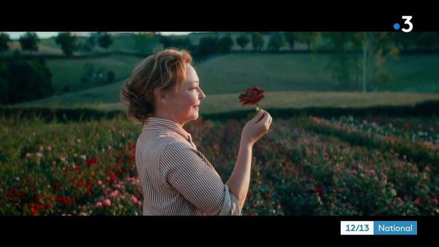 Cinéma : Catherine Frot découvre le métier d'obtenteur de roses