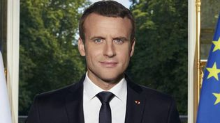 Le portrait officiel du président de la République Emmanuel Macron (détail)  (Soazic de la Moissonière)