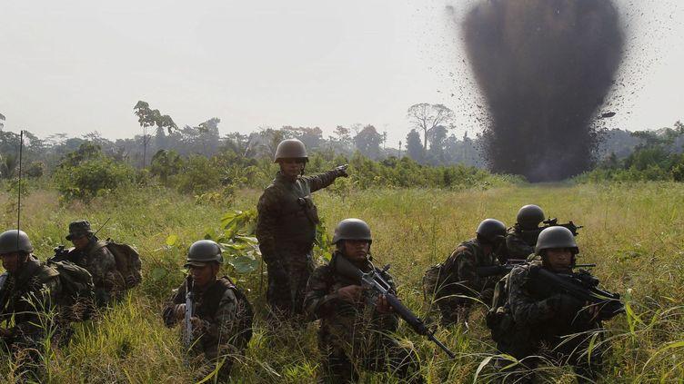 Les forces spéciales péruviennes lors d'une opération de destruction d'un champ de coca, le 12 septembre 2014. (Enrique Castro-Mendivil / Reuters)