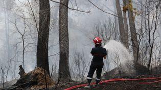 Un sapeur-pompier lutte contre un incendie à Carros dans les Alpes-Maritimes en juillet 2017. (VALERY HACHE / AFP)