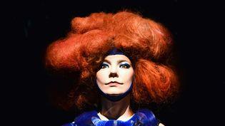 Un mannequin à l'exposition consacrée à Björk au MOMA de New York jusqu'au 7 juin 2015.  (Sean Zanni/Patrick McMullan / SIPA)