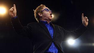 Elton John sur scène à Saint-Laurent-sur-Sèvres, au festival de Poupet, le 3 juillet 2013  (Jean-Sébastien Evrard / AFP)