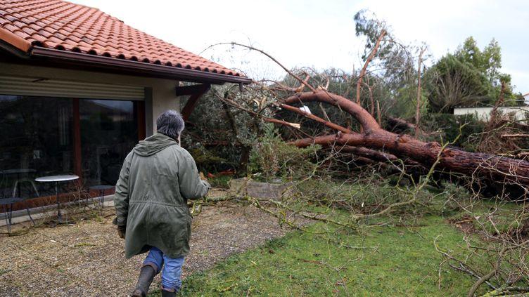 Un homme dans son jardin après le passage de la tempête Myria, le 2 mars. (FLORIAN ALBESSARD / MAXPPP)
