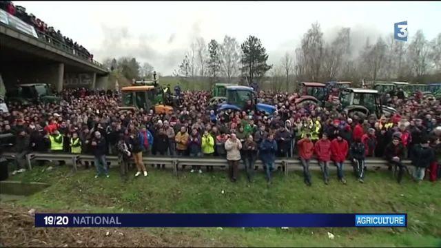 Crise des éleveurs : les agriculteurs ne décolèrent pas