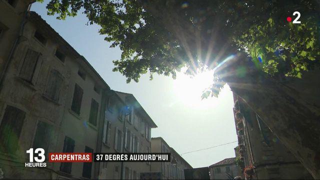 Canicule : Carpentras, ville la plus chaude de France