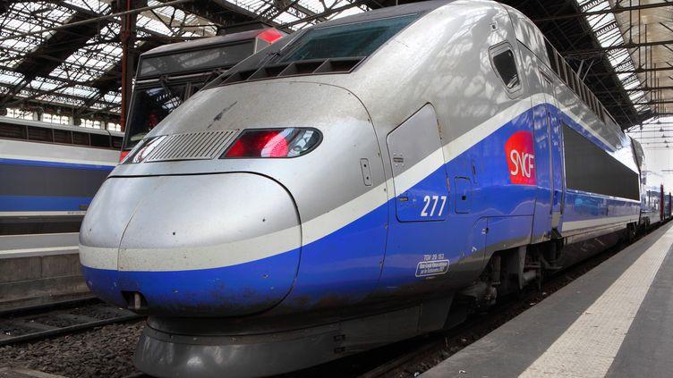 """Un TGV en gare de Lyon, à Paris, le 12 juillet 2014. Le collectionneurFrancesco Plateroti a oublié ses peintures dans le train Paris-Genève """"9789""""du 21 novembre 2014. (MANUEL COHEN / AFP )"""