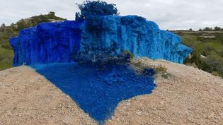 """La """"Falaise bleue"""" de Bernard Brillanti fait polémique à Vitrolles  (Bernard Brillantine)"""