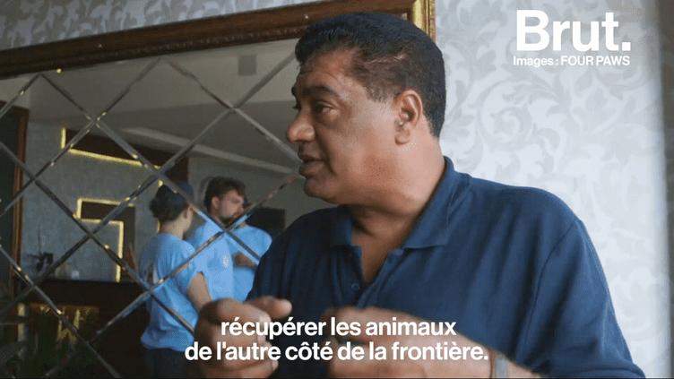 VIDEO. De Bagdad à Mossoul, il traverse des zones de guerre pour y sauver les animaux (BRUT)