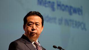 Le président d'Interpol,Meng Hongwei, lors du congrès international de cette organisation à Singapour, le 4 juillet 2017. (ROSLAN RAHMAN / AFP)