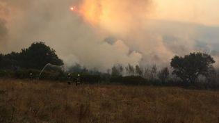 Des pompiers tentent d'éteindre le feu, autour de Barbaggio (Haute-Corse), le 25 août 2016. (ERWAN SCHIEX / FRANCE 3 VIASTELLA)