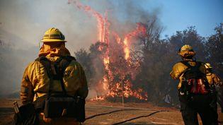Des pompiers combattent un incendie à Malibu, en Californie (Etats-Unis), le 10 novembre 2018. (GETTY IMAGES NORTH AMERICA / AFP)