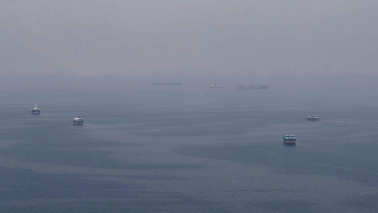 Des navires circulent dans le détroit d'Ormuz, entre les côtes d'Oman et de l'Iran, un des principaux points de passages de pétroliers au monde, le 21 juillet 2018. (Photo d'illustration) (HAMAD I MOHAMMED / REUTERS)