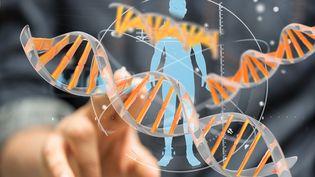 Le big data et la collecte des données des patients pour affiner les diagnostics et les traitements (FOTOLIA)