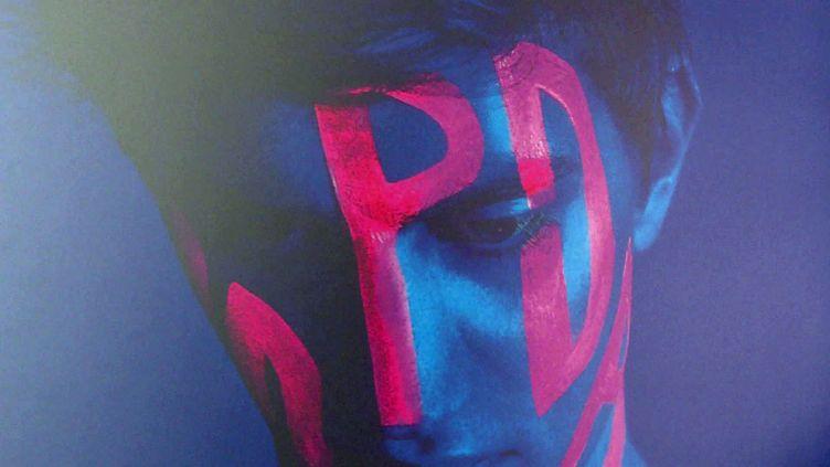 """Affiche du film """"PD"""" d'Olivier Lallart (France 3 Hauts-de-France)"""