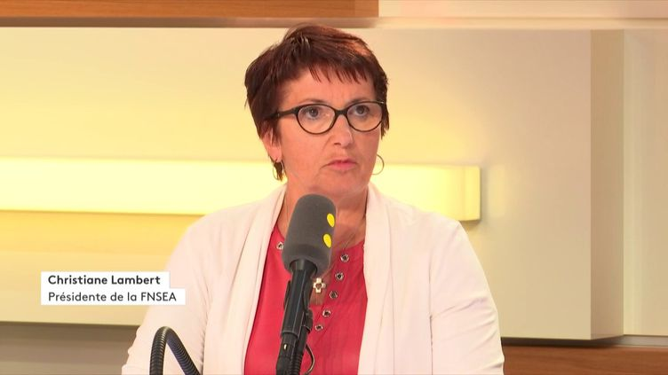 Christiane Lambert, présidente de la FNSEA,mardi 28 août. (RADIO FRANCE)