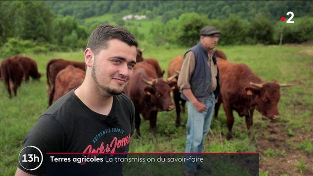 Agriculture : la nécessaire transmission du savoir-faire en Ariège