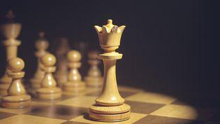 """Les échecs se sont fait une place dans le monde de l'esport, boostés par la sortie de la série """"Le Jeu de la Dame"""" sur Netflix. (KTSDESIGN/SCIENCE PHOTO LIBRARY / KTS)"""