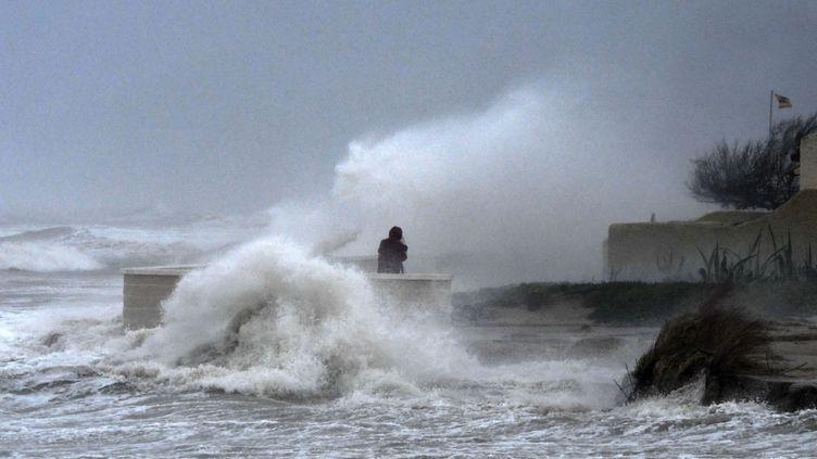 Une personne prend une photo des grosses vagues sur la page d'El Saler, tandis que la tempête Gloria atteint la côte espagnole près de Valence, le 20 janvier 2020. (JOSE JORDAN / AFP)