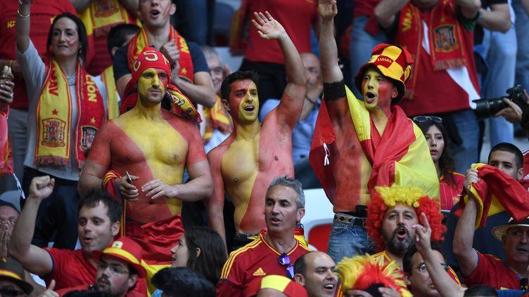 Les supporters de l'Espagne lors du match contre la Turquie.  (FEDERICO GAMBARINI / DPA)
