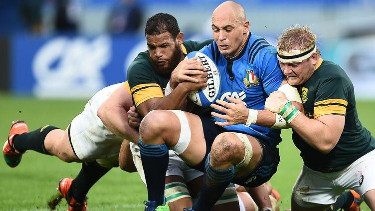 Sergio Parisse aux prises contre deux Sud-Africains (FILIPPO MONTEFORTE / AFP)