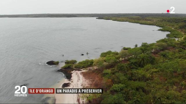 Île d'Orango en Guinée-Bissau : les habitants respectent et préservent la nature