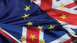 Des drapeaux européens et du Royaume-Uni, le 25 mars 2019 à Londres. (DANIEL LEAL-OLIVAS / AFP)