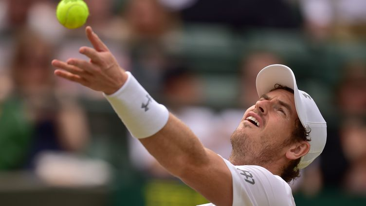 Andy Murray  (LEON NEAL / AFP)