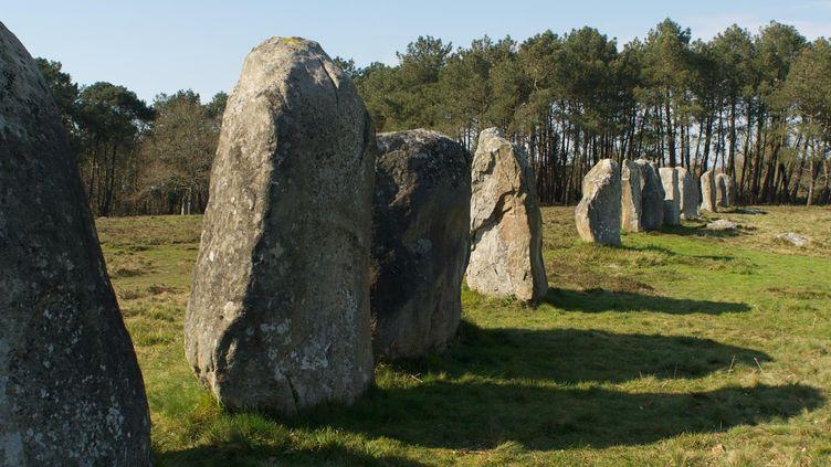 L'alignement des menhirs de Kerlescan, à Carnac (Morbihan).  (Franck Bel / Prismapix/ AFP)