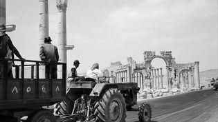 """""""Palmyre - Alep - Damas : La Syrie en noir et blanc"""",ExpositionpPhotographies de Michel Eisenlohrau musée archéologique de Marseille (Michel Eisenlohr)"""