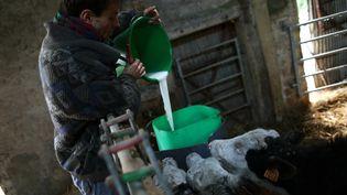 Ferme bio à Bernières-le-Patry dans le Calvados. (CHARLY TRIBALLEAU / AFP)